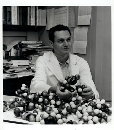 Photo of Marshall Nirenberg holding a molecular model