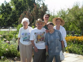 Herb garden volunteers