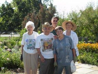 Herb garden volunteers