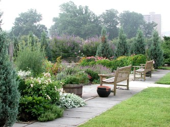 Herb garden and bench