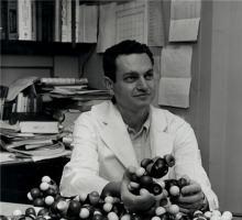 Nirenberg holding molecular models
