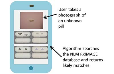 A mock-up of the basic funcationality envisioned: User takes a photo of an unknown pill. An algorithm searches the NLM RxIMAGE database and returns likely matches.