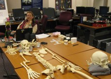 Ms. Harris sits at the end of a conference table on which a replica of a human skeleton is displayed.