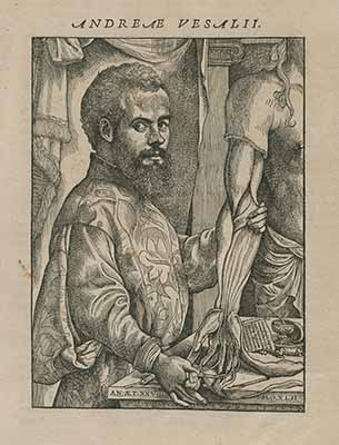Woodcut of a bearded man showing the muscles within the hand and arm of a cadaver