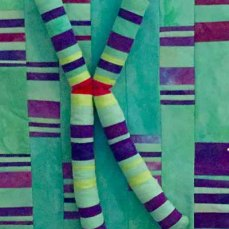 Fiber art in teal, purple, red and yellow representing chromosomes.
