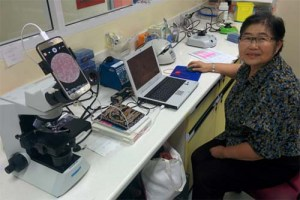 A woman staffs a workstation set up to screen for malaria