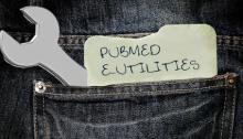 "A wrench and a piece of paper reading ""PubMed E-Utilities"" stick out of the backpocket of a pair of jeans"