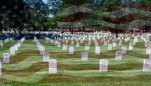 white headstones amid green grass at Arlington National Cemetery