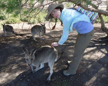 a young woman bends over to pet a kangaroo